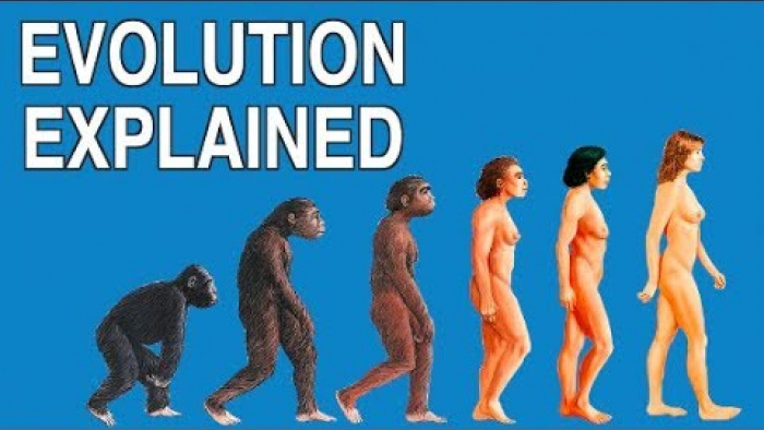 EVOLUTION EXPLAINED IN 3 MINUTES